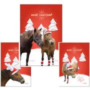 【メール便送料込】ホーストラスト クリスマスカード3枚セット(寄付つき)